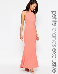 Jarlo Petite Carmelita Maxi Dress With Plunge Back Nude