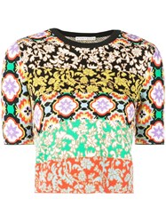 Alice Olivia Ciara Crew Neck Sweater Multicolour