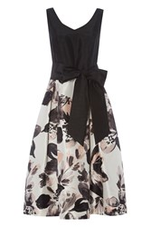 Roman Originals Contrast Floral Fit And Flare Dress Pink