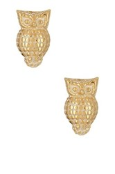 Anna Beck 18K Gold Plated Sterling Silver Owl Stud Earrings Metallic