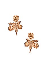 Lele Sadoughi Small Crystal Lily Earring Brown
