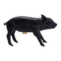Areaware Bank In The Form Of A Pig Money Bank Black