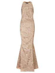 Ariella Anastasia Lace Evening Gown Gold