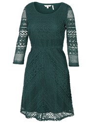 Fat Face Lucy Chevron Lace Dress Tap Green
