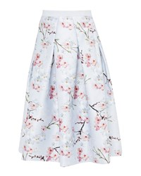 Ted Baker Pallye Oriental Blossom Full Skirt Light Grey