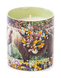 Seletti Toiletpaper Candle Pony Various