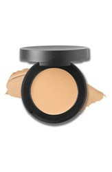 Bareminerals Spf 20 Correcting Concealer Light 2