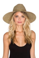 Ale By Alessandra Sancho Hat Brown