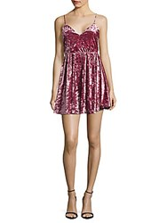 Romeo And Juliet Couture Lace Velvet Woven Dress Rose