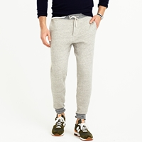 J.Crew Wallace And Barnes Colorblock Sweatpant