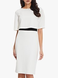 Adrianna Papell Layered Sheath Dress Ivory Black