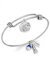 Unwritten Love Charm And Sodalite 8Mm Bangle Bracelet In Stainless Steel
