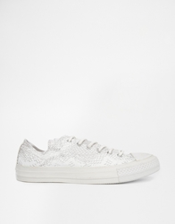 Converse All Star White Reptile Print Ox Trainers