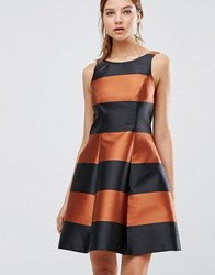 Coast Milliana Bronze Stripe Dress Multi