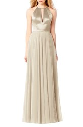 After Six Women's Satin And Chiffon Gown Palomino