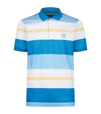 Paul And Shark Bright Stripe Polo Shirt Male Blue