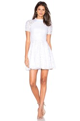 Lover Oasis Fit And Flare Mini Dress White
