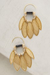 Anthropologie Golden Leaf Earrings