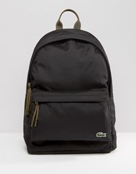 Lacoste Backpack In Navy Black