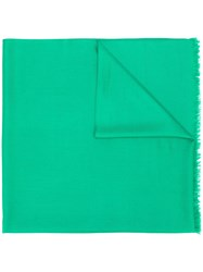 N.Peal Pashmina Stole Scarf Green
