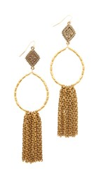 Vanessa Mooney The Hailey Hoop Earrings Gold