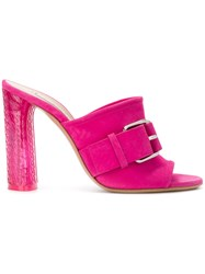Casadei Buckle Detail Mules Pink And Purple