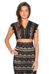 Nightcap Sierra Lace Crop Top Black