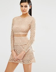 Missguided Mesh Insert Lace Skater Dress Camel