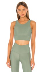 Strut This Piper Bra In Sage. Sage Green Rib