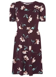 Dorothy Perkins Tall Berry Floral Skater Dress Red