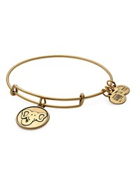 Alex And Ani Elephant Charm Bracelet Gold