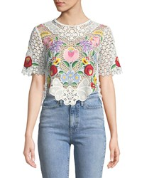 Saylor Crewneck Short Sleeve Floral Embroidered Lace Crop Top Multi