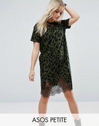 Asos Petite T Shirt Dress With Lace Inserts In Animal Print Green