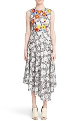 Women's Creatures Of The Wind 'Desmo' Embroidered Floral Print Asymmetrical Dress