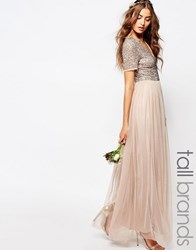 Maya Tall V Neck Maxi Tulle Dress With Tonal Delicate Sequins Taupe Cream