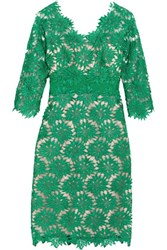 Mikael Aghal Guipure Lace And Tulle Dress Green