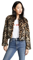 Jocelyn Longhair Rabbit Fur Jacket Leopard