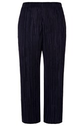 Damsel In A Dress Issy Trouser Navy