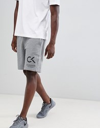 Calvin Klein Performance Logo Shorts Grey