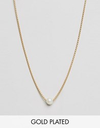 Dogeared Gold Plated Silky Box Chain Large White Pearl Adjustable Choker Necklace Gold White