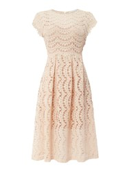 Body Frock Fit And Flare Dress Pink