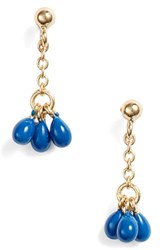 Argentovivo Argento Vivo Small Enamel Drop Earrings Lapis