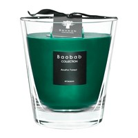 Baobab All Seasons Scented Candle Arusha Forest Green