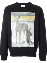 Palm Angels Dog Photo Print Sweatshirt Black