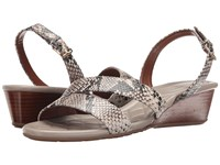 Cole Haan Tali Grand Wedge Sandal Roccia Snake Print Women's Sandals Animal Print