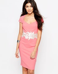 Paper Dolls Pencil Dress With Lace Detail Pink