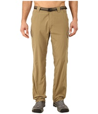 Exofficio Amphi Pants Walnut Men's Casual Pants Brown