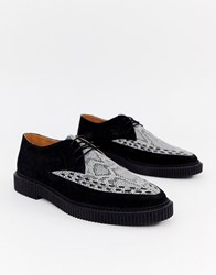 House Of Hounds Kain Creeper Derby Shoes In White Snake Print Black