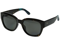 Toms Audrina Polarized Ebony Tortoise Fashion Sunglasses Black