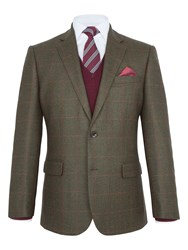 Paul Costelloe Fulham Check Wool Blazer Green